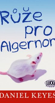 Ruze pro Algernon 2